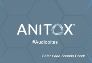 Anitox Audiobites – The Salmonella Problem in Germany with Simon Carlton, Rein Derksen and Peter Radewahn
