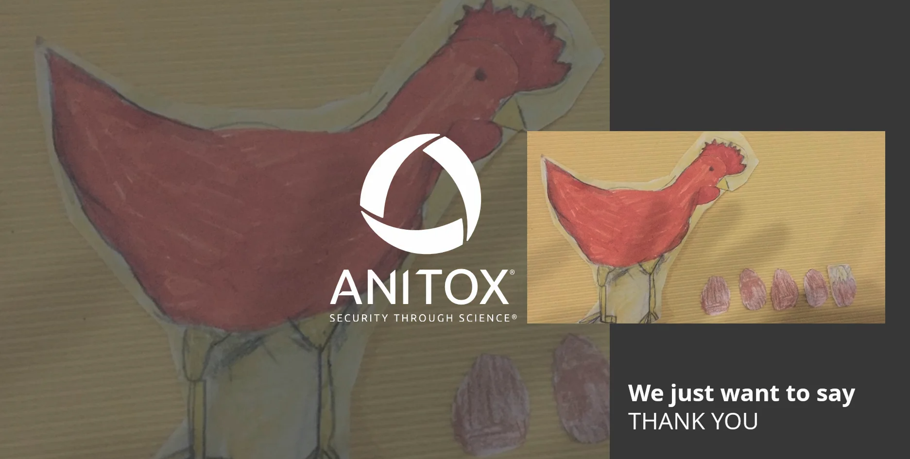 Thank you Anitox Artists
